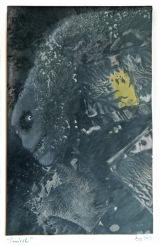 Šmírák, 2009, 38 x 30 cm, olej na kartonu / k prodeji / č. 55